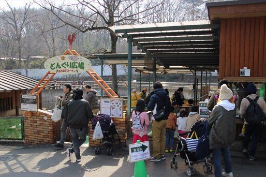 「どんぐり広場」はモルモットやノウサギと触れ合える人気のコーナー