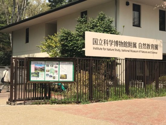 国立科学博物館付属 自然教育園