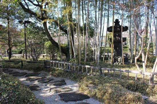 日本庭園には四季折々の花が咲く