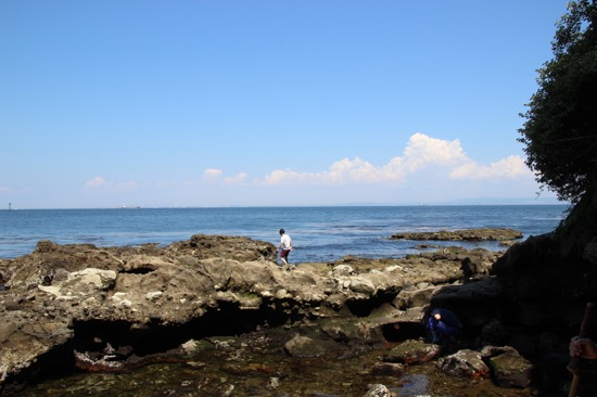 階段を降りていくと海辺に出られる。縄文・弥生時代の貝塚も見られた