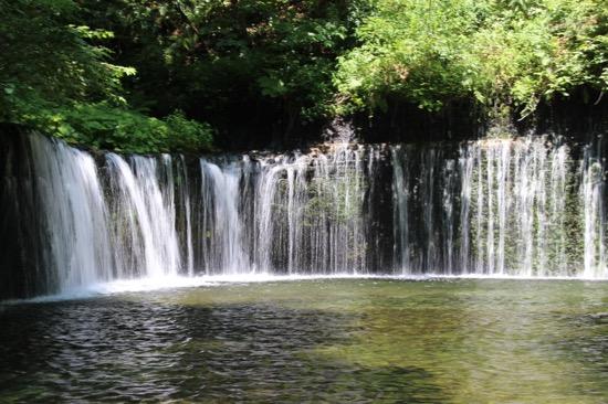 これが高さ約3m、幅70mの「白糸の滝」。足元に広がる透明な水も美しかった