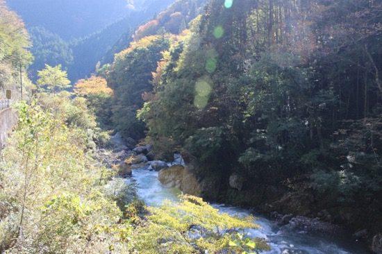 日原川渓流釣場では渓流釣りの醍醐味を楽しめる