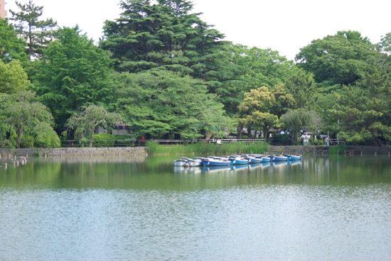 ボートに乗って千葉公園を満喫