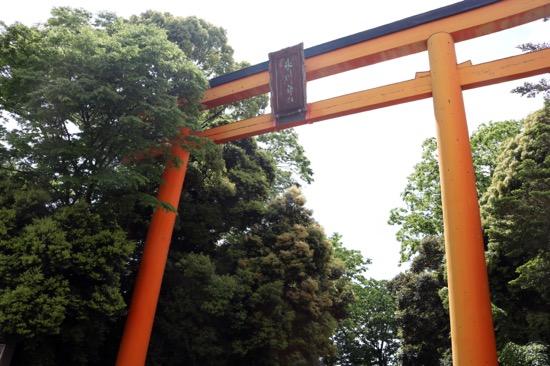 神社の入口にある15メートルもの高さを誇る大鳥居は日本一の大きさ!