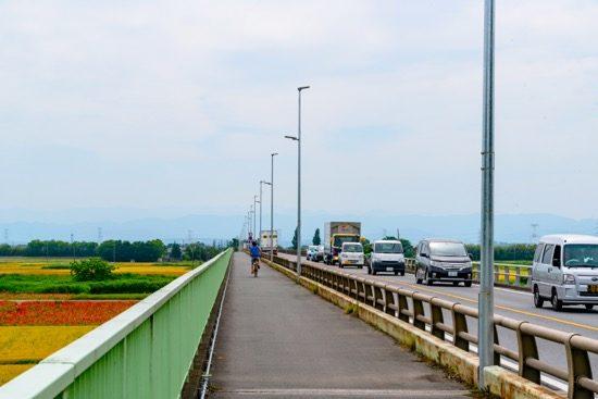 御成橋の上から。ここから対岸の吉見町まで直線が続く。晴れていれば秩父連山、上州、信州の山も見える
