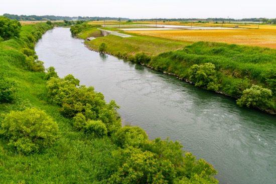 実際の荒川の川幅は広くはない