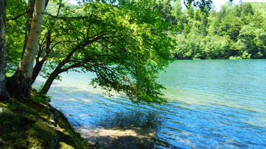 晴れた日にはエメラルドの色の湖水を眺めることができる