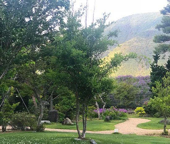 長野県の上山田温泉。旅館内から見える山の景色に癒やされたそう