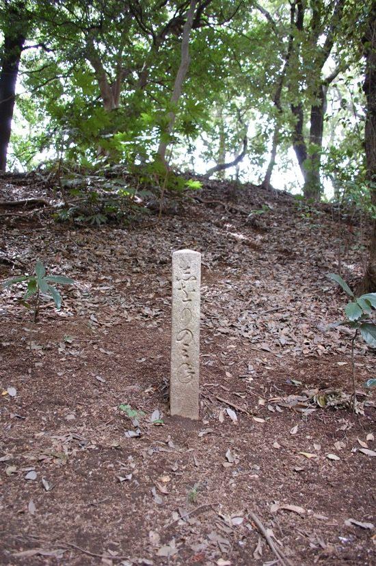 景勝地に建てられた石柱。園内には通行不可の場所もあるので、全石柱を見つけるのは難しい