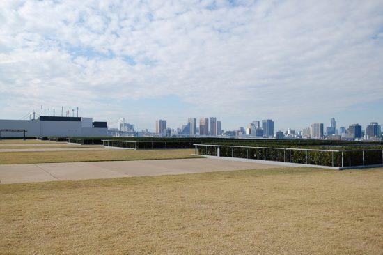 天気が良ければ、晴海埠頭の先にある都心のビル街を眺めることができます