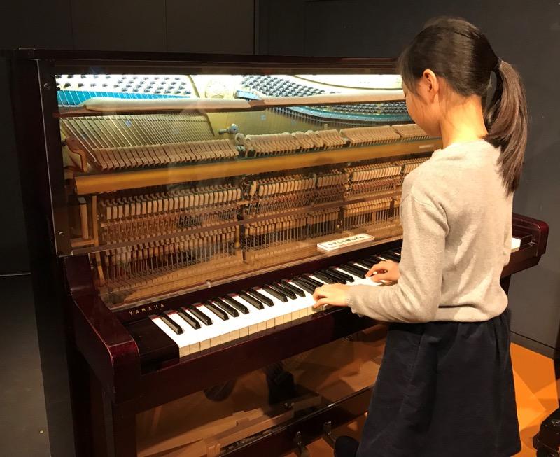 音が鳴る仕組みが見えるピアノ。背面からも観察できる